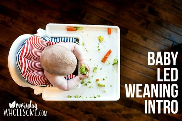 baby led weaning intro why
