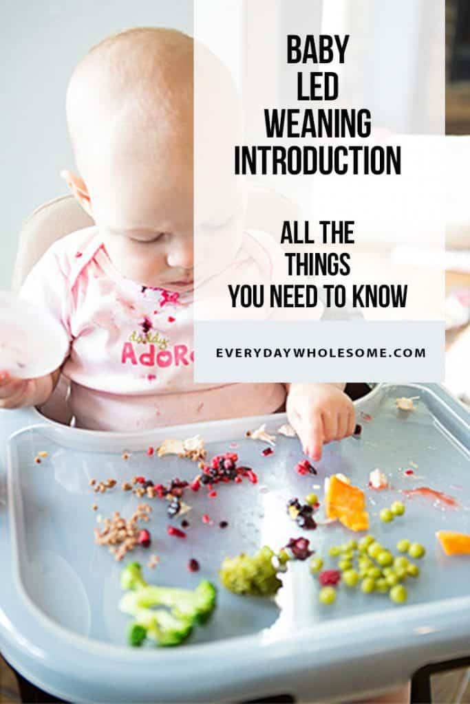 baby led weaning feeding introduction first foods