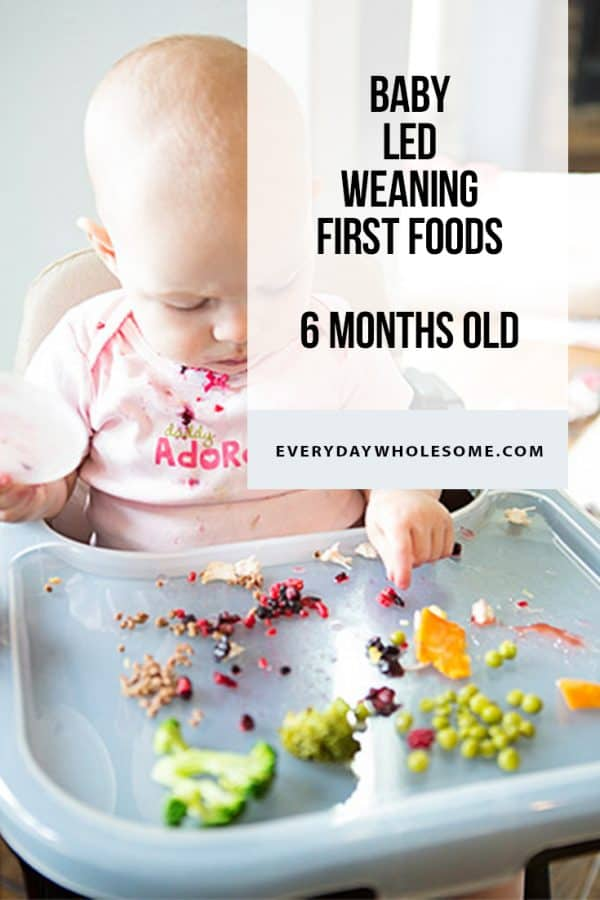 BABY LED WEANING FIRST FOODS 6 MONTHS OLD