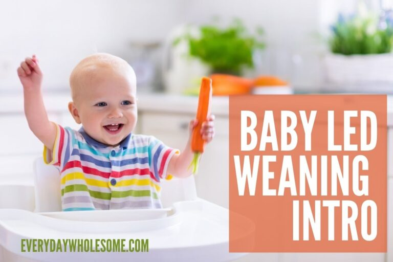 Why & What is Baby Led Weaning | Introduction
