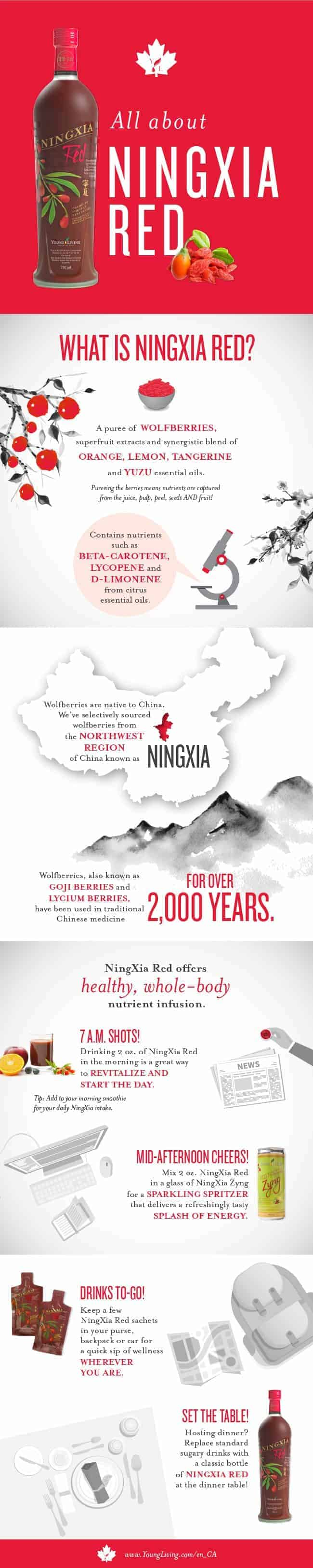 NINGXIA RED INFOGRAPHIC