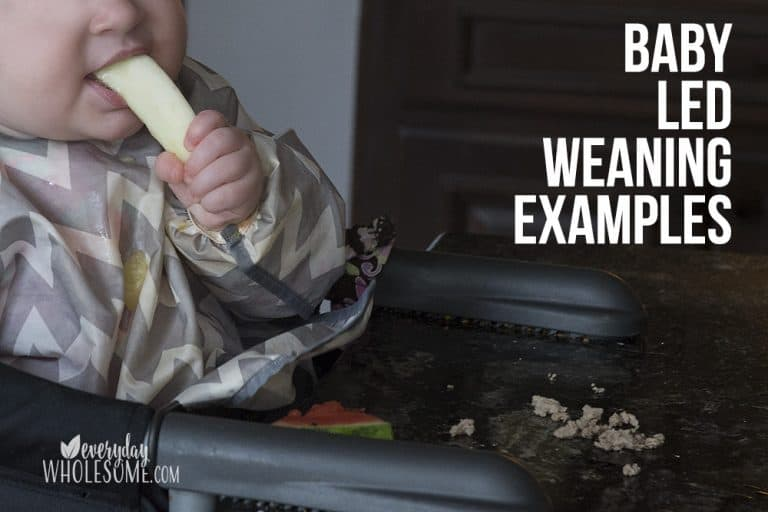 Baby Led Weaning First Foods & Recipes | BLW Examples