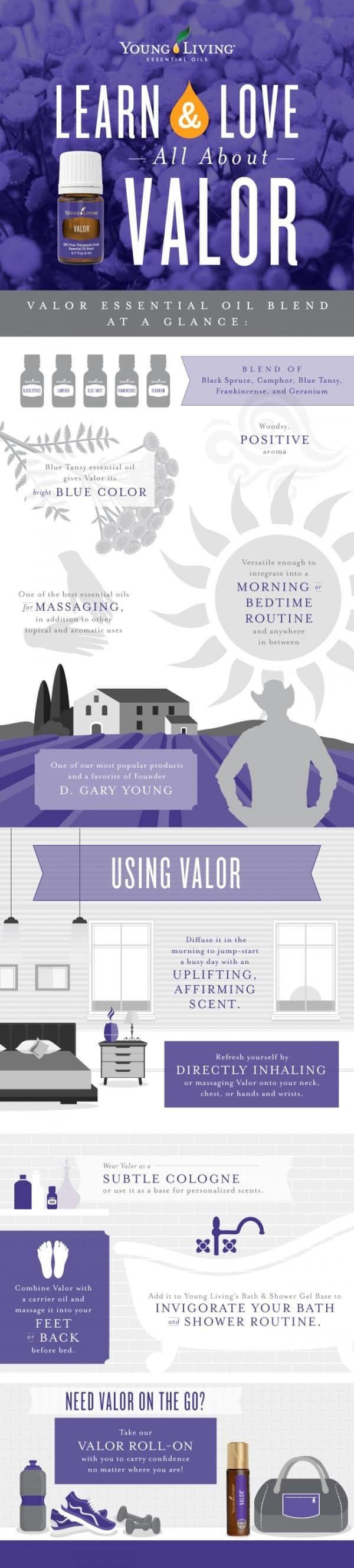 ALL ABOUT VALOR INFOGRAPHIC