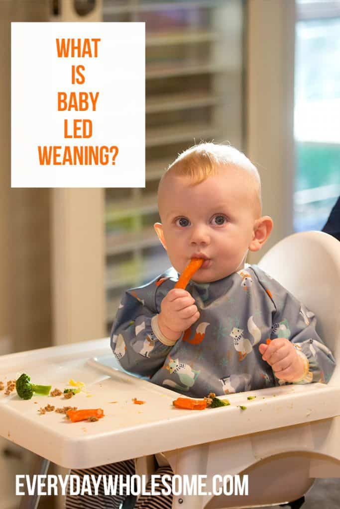 What is baby led weaning. how to do blw. blw first foods.
