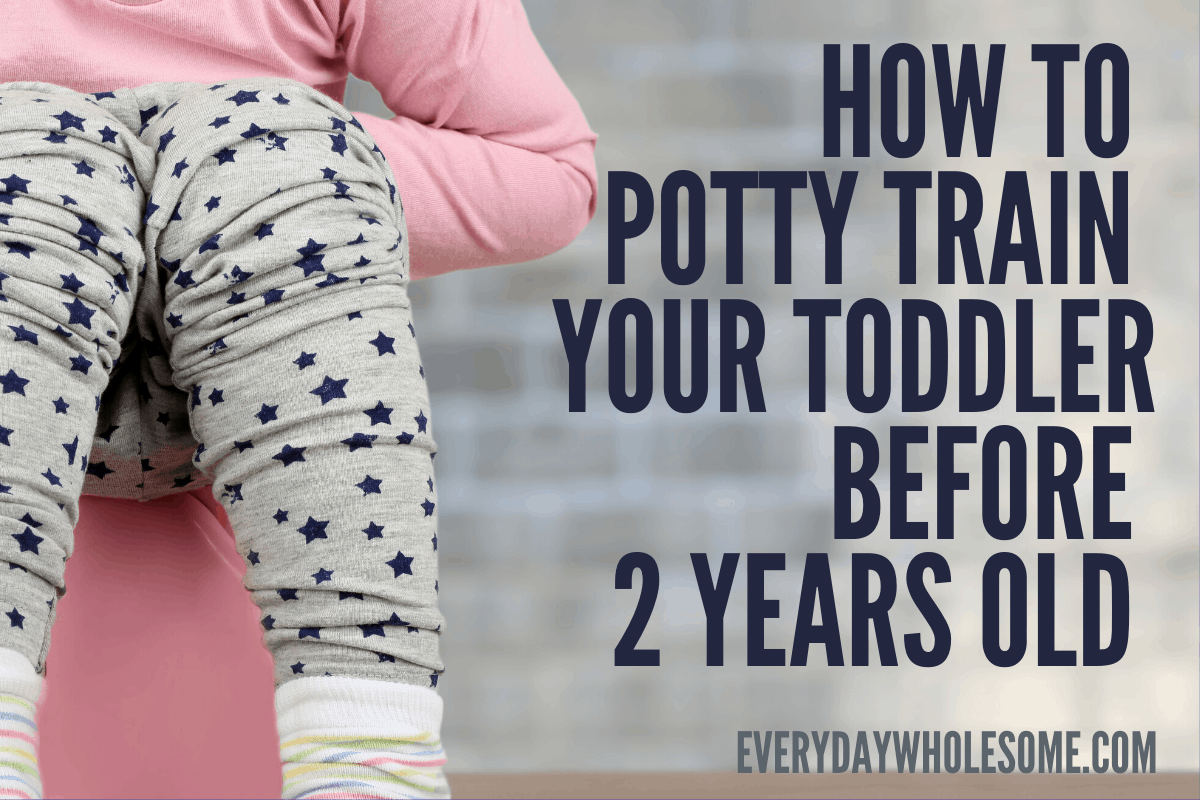 how to potty train your toddler before 2 years old
