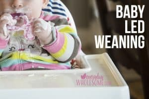 baby led weaning introduction first foods 6 months old