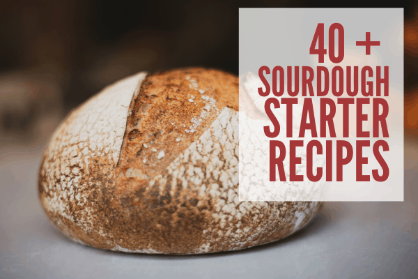 40 sourdough starter bread recipes