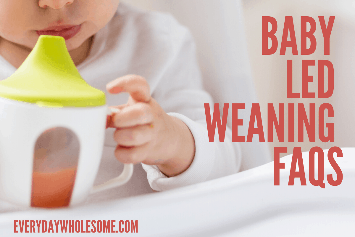 baby led weaning faqs