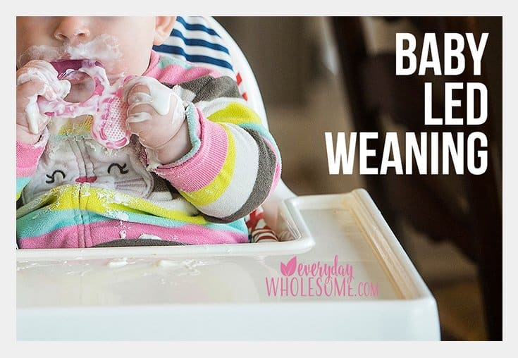 baby-led-weaning-introduction-meals-recipes