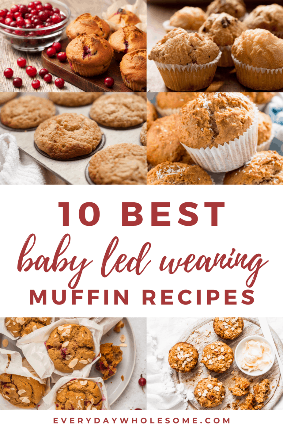 10 best blw baby led weaning muffin recipes