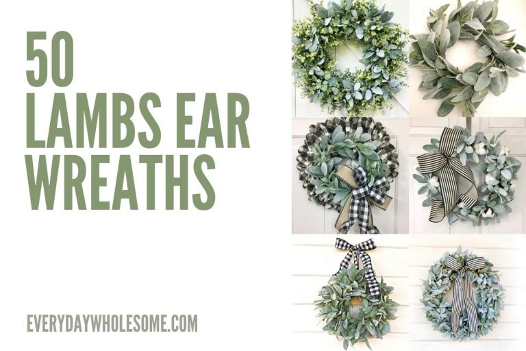 50 Lambs Ear Wreaths for Spring, Summer, Fall, All Year or Everyday