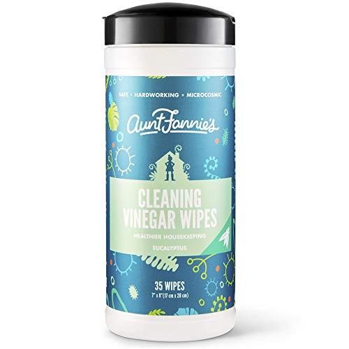 Aunt Fannie's Vinegar Cleaning Wipes, Eucalyptus